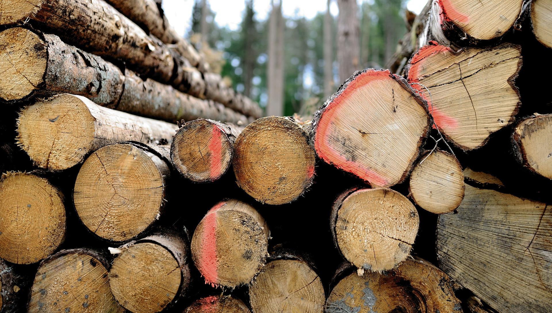 wood-5163607_1920